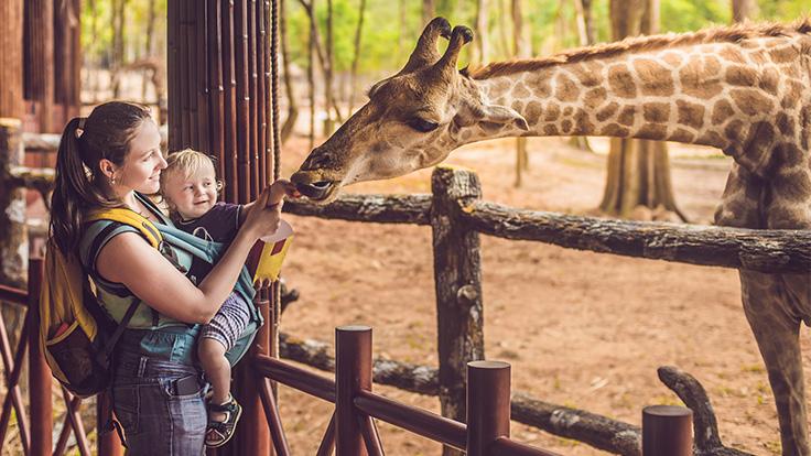 dierentuin glutenvrij